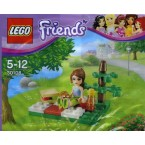 LEGO Friends 30108 Summer Picnic