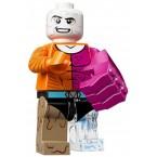 LEGO 71026 DC Minifigures - Metamorpho